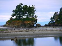 Sea stack near Sequim, WA. There are a series of these along the coast of Washinton State adjoining the Strait of Juan de Fuca stock photos