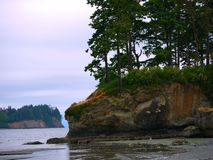 Sea stack near Sequim, WA Stock Images