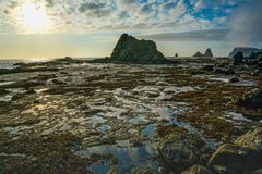 Sea Stack and Ocean with Sky Reflection. This is the picture of sea stacks and reflection of the sky from the ocean at Rialto Beach, Olympic National Park Royalty Free Stock Photography