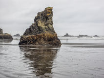 Sea stacks. Litter the sandy beach at Olympic National Park, Washington stock image