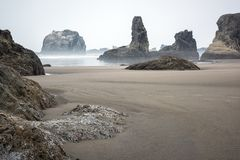 Sea stacks and rock formations in Bandon, Oregon. Sea stacks and rock formations on the beach in Bandon, Oregon on a foggy morning royalty free stock images