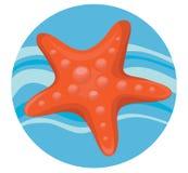 Sea star Stock Image