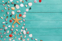 Sea star and assorted sea shells on stained wood Stock Photo