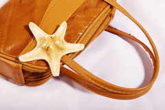 Sea star on a bag Royalty Free Stock Photography