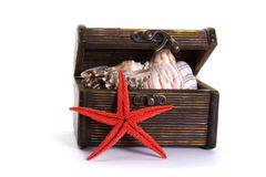 Sea-star and chest Royalty Free Stock Photos