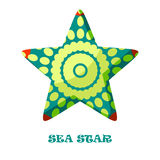 Sea Star color vector illustration. Stock Photography