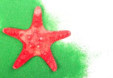 Sea star Stock Photography
