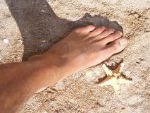 Sea star and the human foot Stock Photos