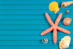 Sea star and marine things. Stock Images