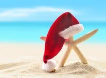 Sea-star in santa hat walking at sea sandy beach. Stock Image