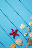 Sea star and shells on wooden blue background. royalty free stock photography
