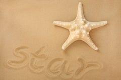 Sea Star Stock Photos