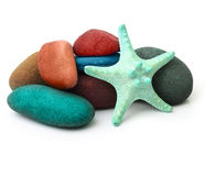 Sea star and stones isolated Royalty Free Stock Photos