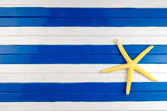 Sea star. Royalty Free Stock Photo