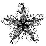 Sea Starfish Stock Image