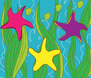 Sea stars Royalty Free Stock Photo