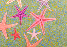 Sea stars on colorful sand Royalty Free Stock Images