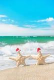 Sea-stars couple in santa hats walking at sea beach Stock Image