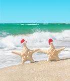 Sea-stars couple in santa hats walking at sea beach. Royalty Free Stock Photography