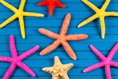 Sea stars. Royalty Free Stock Photography