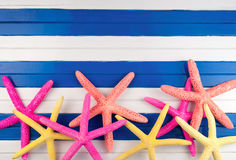 Sea stars. Royalty Free Stock Images