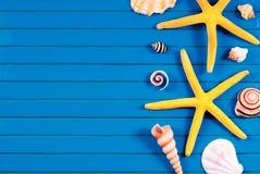 Sea stars and marine things. Stock Photo