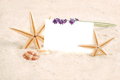 Sea-stars in sand with card for text Stock Photography