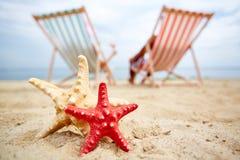 Sea stars on sand Royalty Free Stock Photos