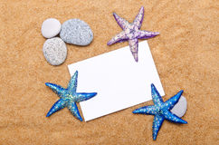 Sea stars  on  white Royalty Free Stock Photos