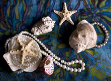 Sea still-life. Still-life with sea cockleshells and pearls Stock Photo