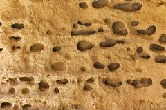 Sea stone background closeup Stock Photo