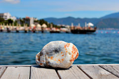 Sea stone colored. On the pier on the background of water Royalty Free Stock Photos