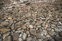 Sea stone Royalty Free Stock Images
