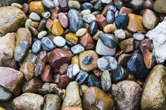 Sea stones background royalty free stock photo