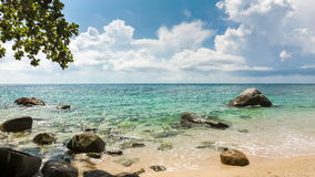 Sea with stones on the beach and tree. Sea shore with stones on the beach and green tree foliage stock footage