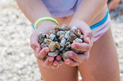 Sea Stones in children's hands Royalty Free Stock Photography