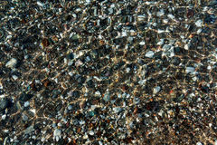Sea stones in clear water Royalty Free Stock Photos
