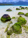Sea stones on the Seychelles. Beautiful sea stones on the Seychelles Royalty Free Stock Image