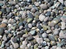 Sea stones Stock Images