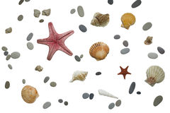 Sea stones. Some sea stones, starfish and seashells isolated on white background Stock Photos
