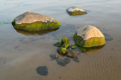Sea stones at the sunset light Royalty Free Stock Photography