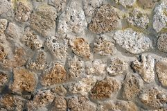 Shell rocks in the wall stock images