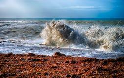 Sea storm. Big wave on seacoast. Stock Images