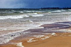 Sea in a storm Stock Image