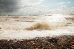 Sea  in storm. Contaminated household waste people Stock Photos