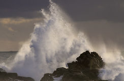 Sea storm at sunset with big wave splash Stock Photography