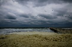 Sea storm at the beach with heavy clouds royalty free stock photo