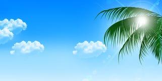 Sea summer landscape background Royalty Free Stock Images