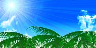 Sea summer landscape background Stock Images