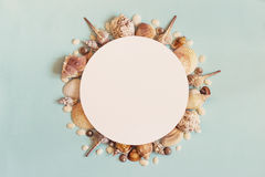Sea summer travel Concept. Frame of sea shells on a blue backgro. Und. Flat lay. Top view with copy space Royalty Free Stock Photo